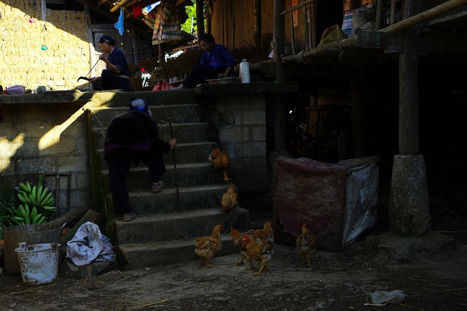 Family Things to do in Cao Bang Bang Gioc falls