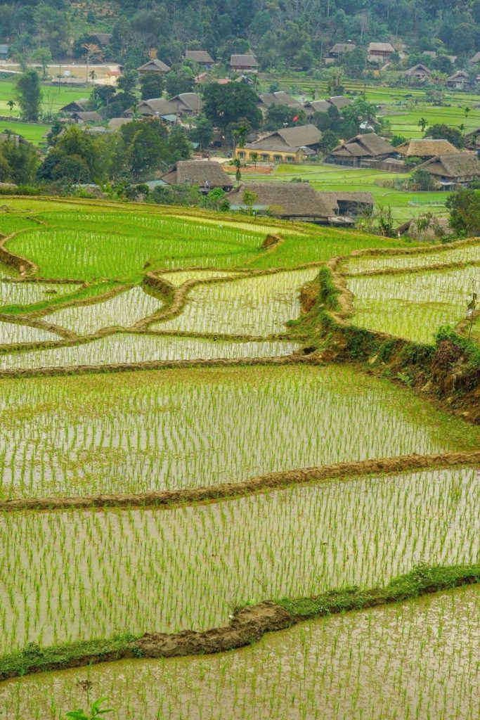 Photo 4 27 20 07 01 28 1 683x1024 Northern Vietnam Tour 6 Days