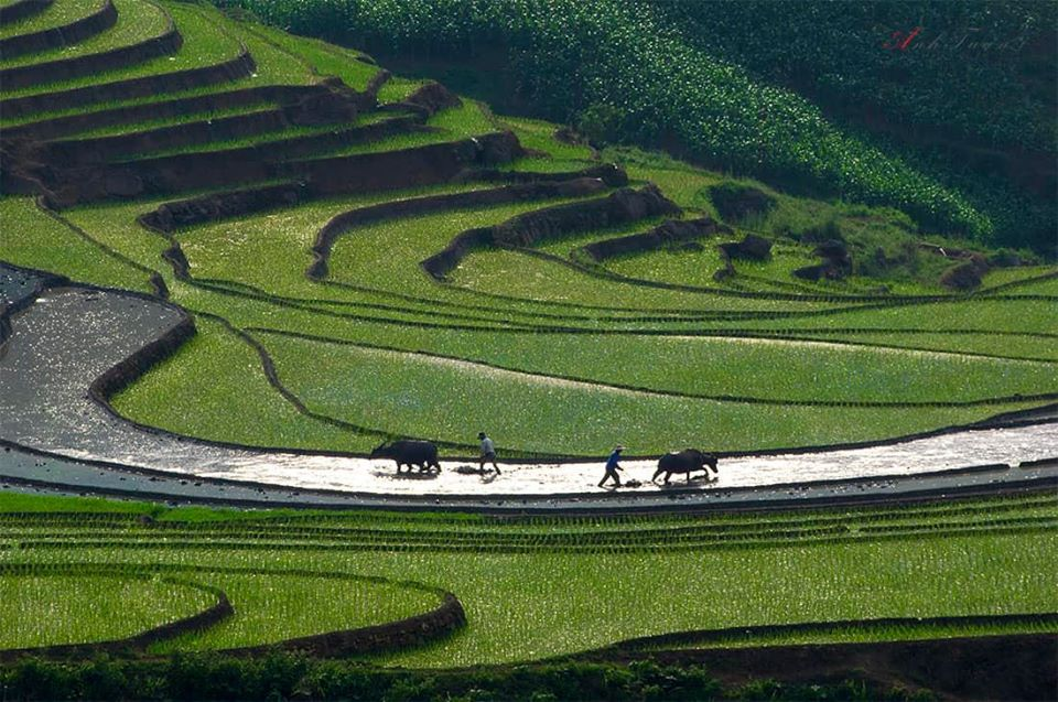Muacay Northern Vietnam You Need to Know