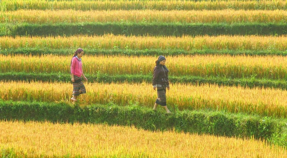 Thang5 Northern Vietnam You Need to Know