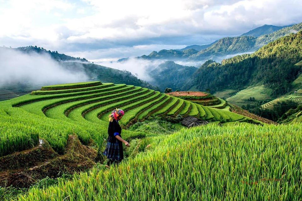 3 day road trip mu cang chai The Perfect 3 day road trip Hanoi to Mu Cang Chai