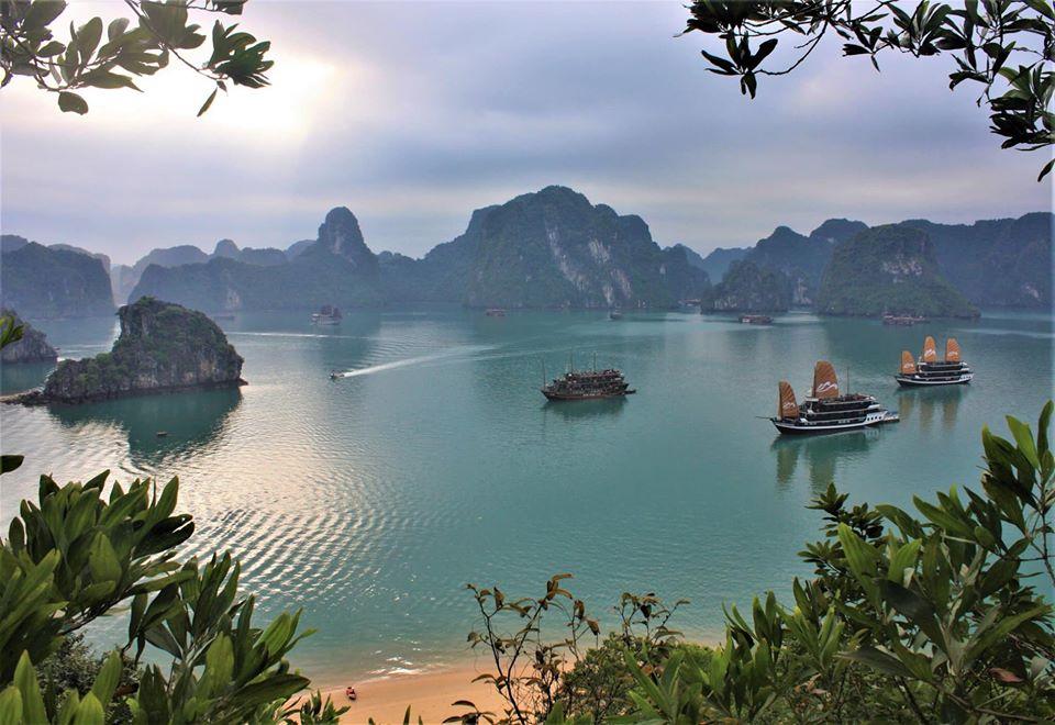 Halongcruise What to do in Halong Bay Tours from Hanoi